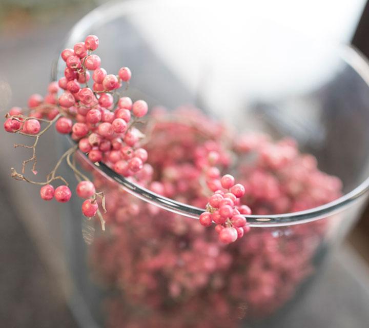 ハナトモの花